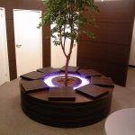 shinsaibashi_tree